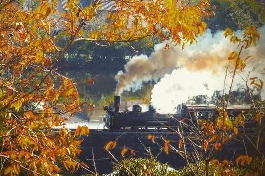 Foto Concurso fotográfico enaltece o Outono das Cores