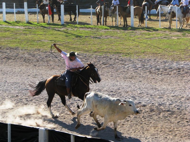Foto de capa 27º Rodeio Crioulo Estadual será de 07 a 10 de novembro em Garibaldi