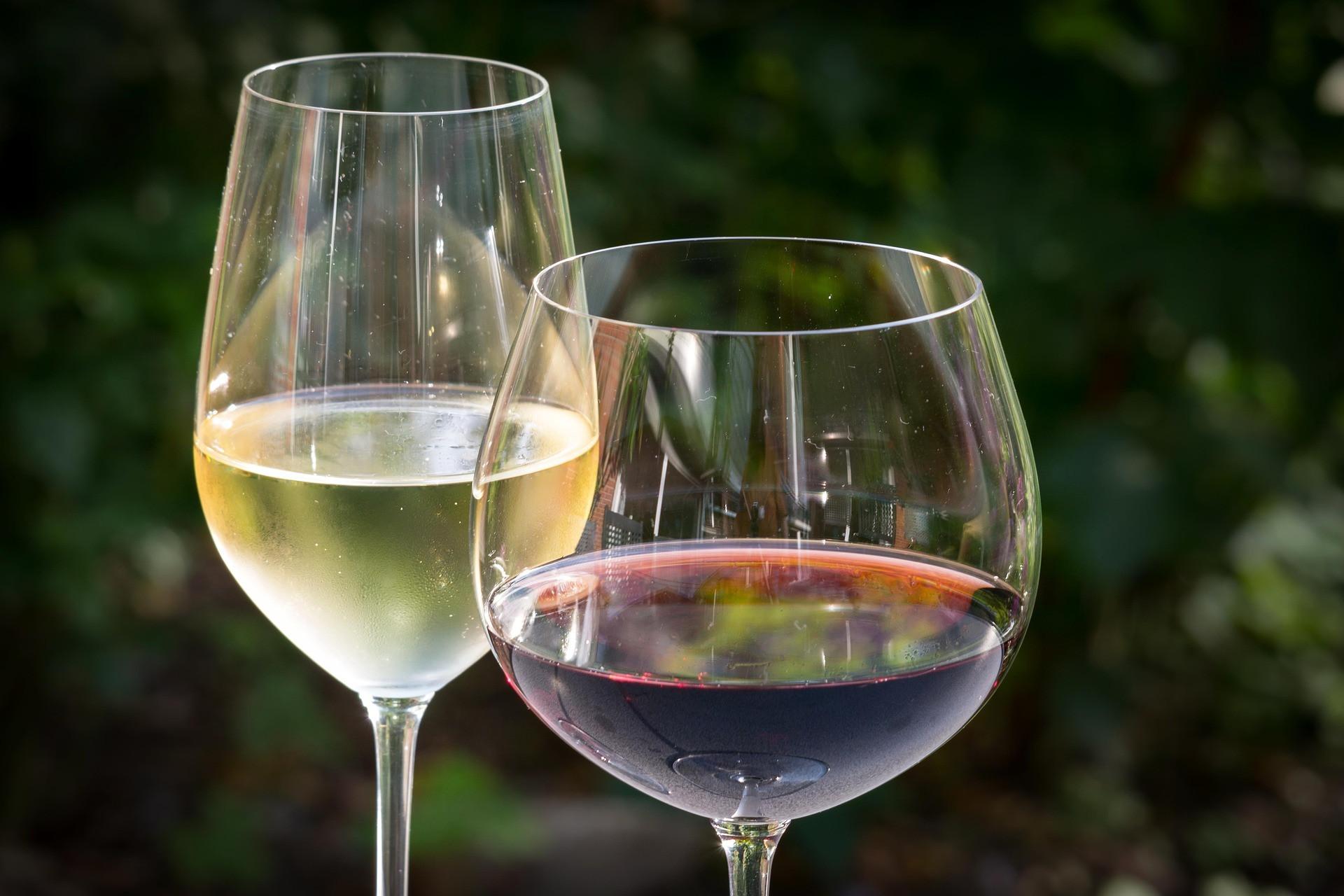 Foto A vez dos vinhos brasileiros
